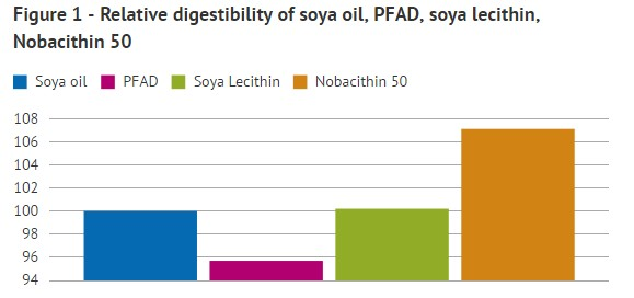 Soy lecithin feed grade- How can you improve fat digestibility